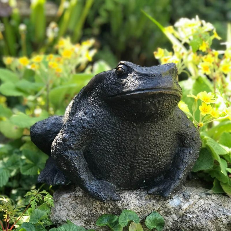 Bronze toad main product image