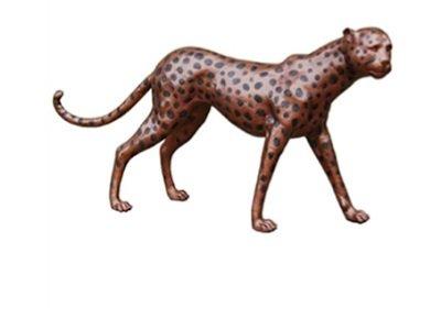 CheetahBS71-732
