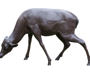 Bronze Grazing Deer