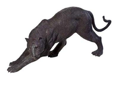 PantherBS56-255