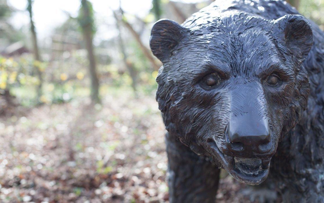 bear-big