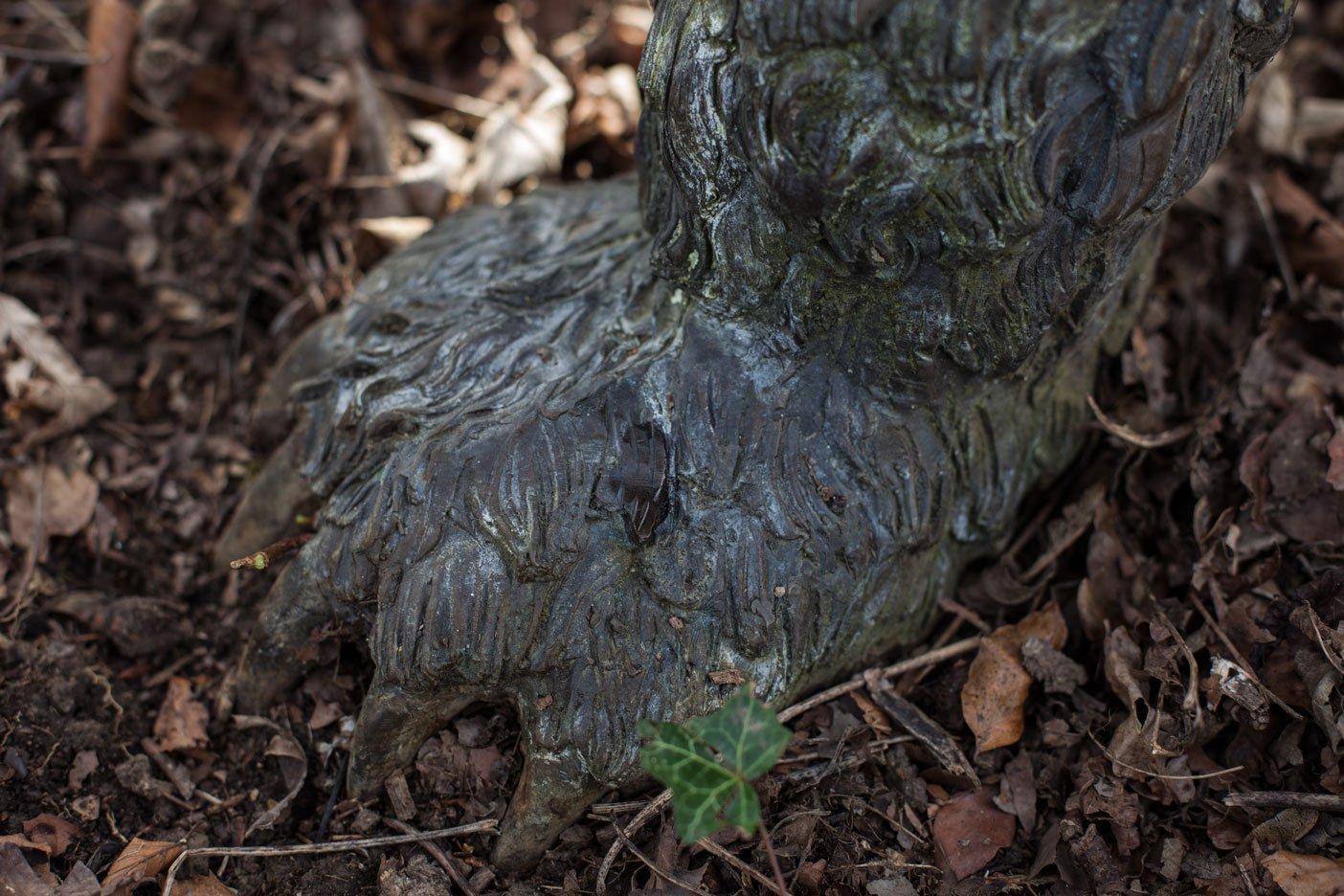 bronze-bear-paw