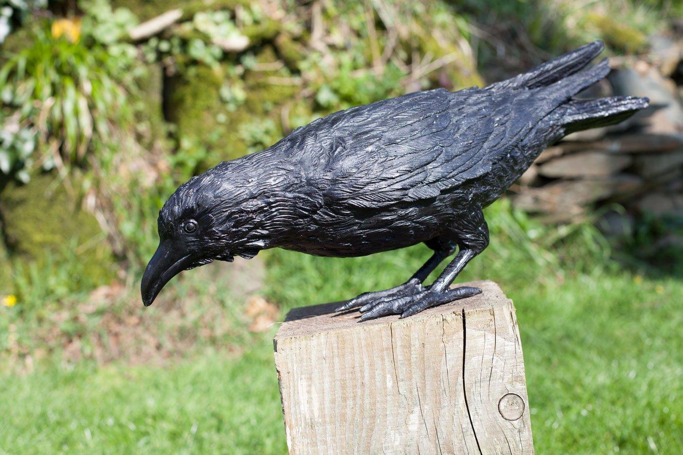 bronze crow pecking beak closed