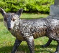 bronze-fox