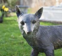bronze-fox-face