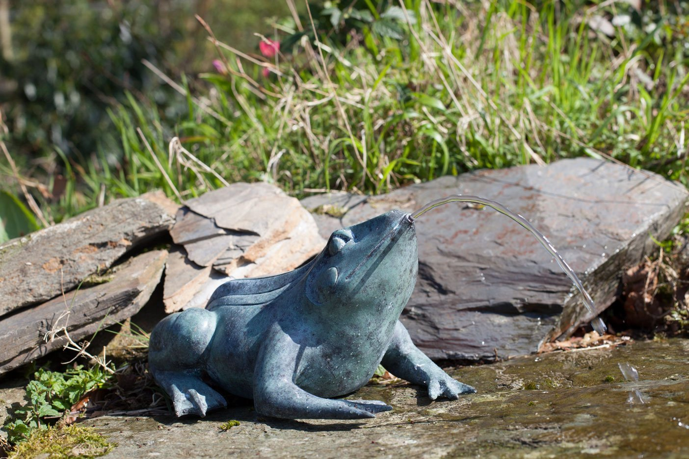 bronze-frog-10