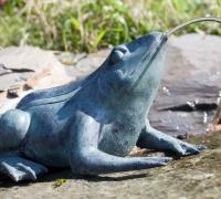 bronze-frog-6