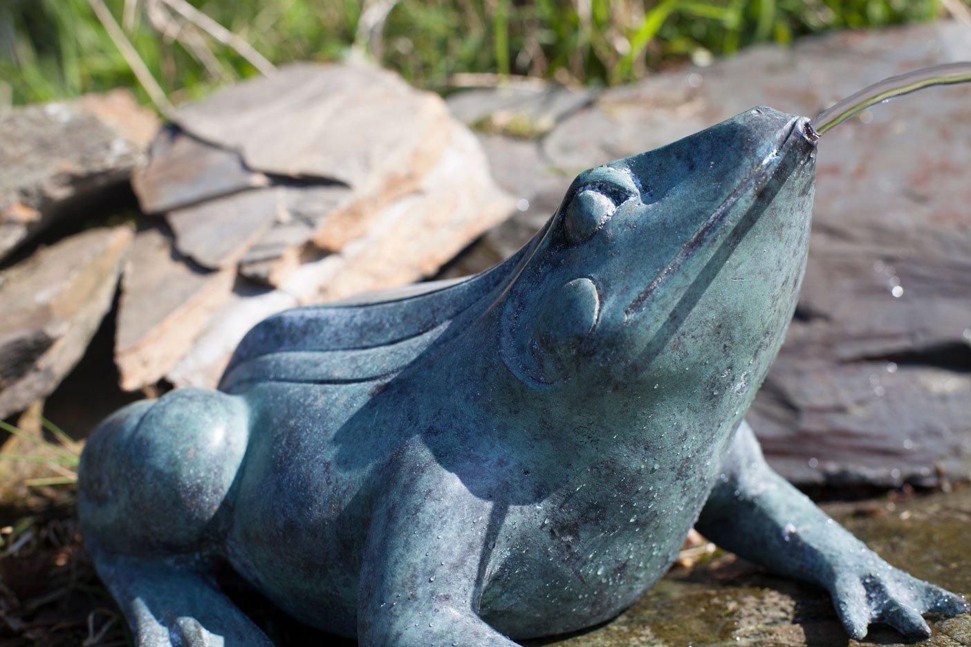 bronze-frog-7