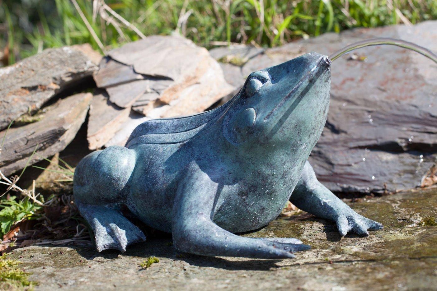 bronze-frog-9