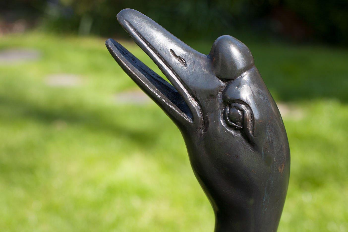 bronze-goose-gos01-beak