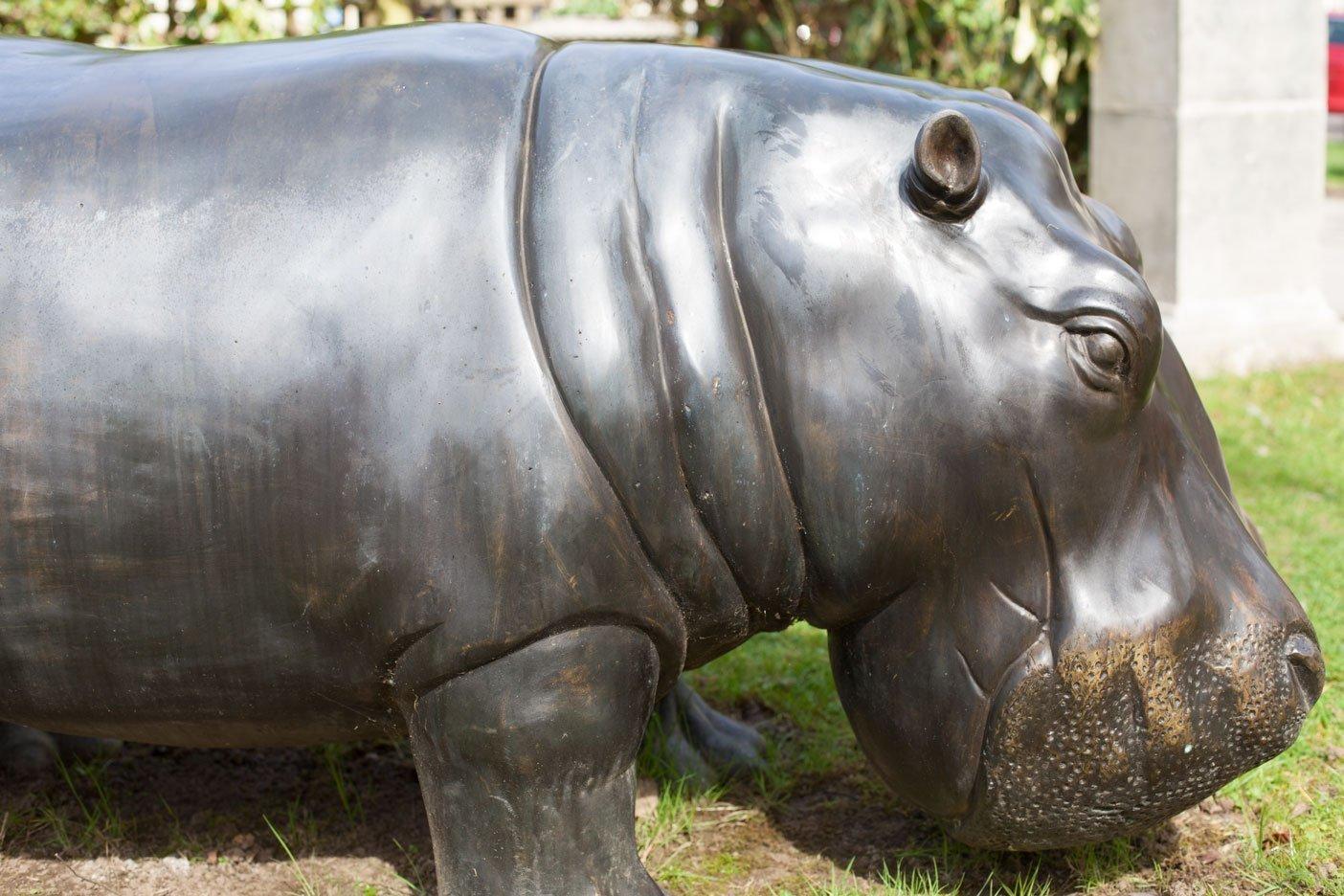 bronze-hippo-11