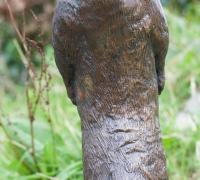 bronze-otter-3