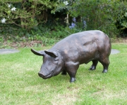 bronze-pig-3