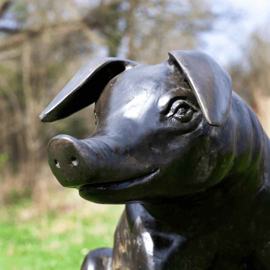 bronze pig4