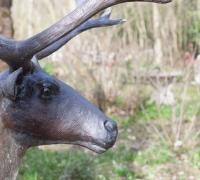 bronze-reindeer-11