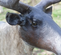 bronze-reindeer-13