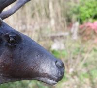 bronze-reindeer-9