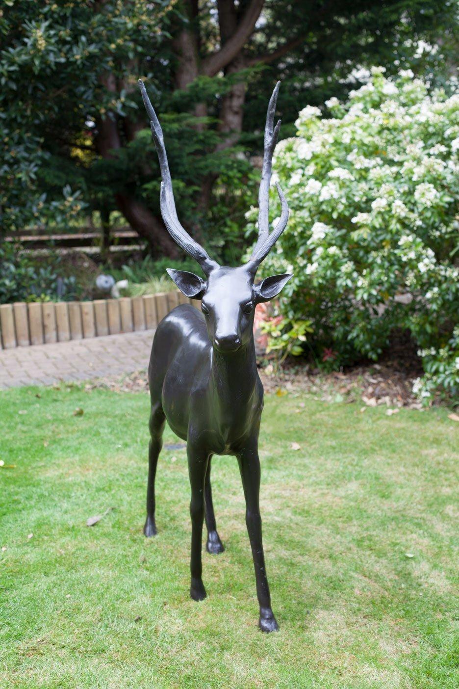 bronze-stag-5