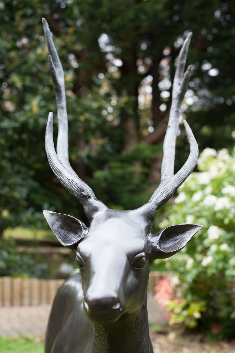 bronze-stag-6