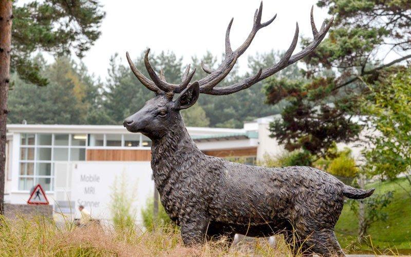 Bronze stag garden statue