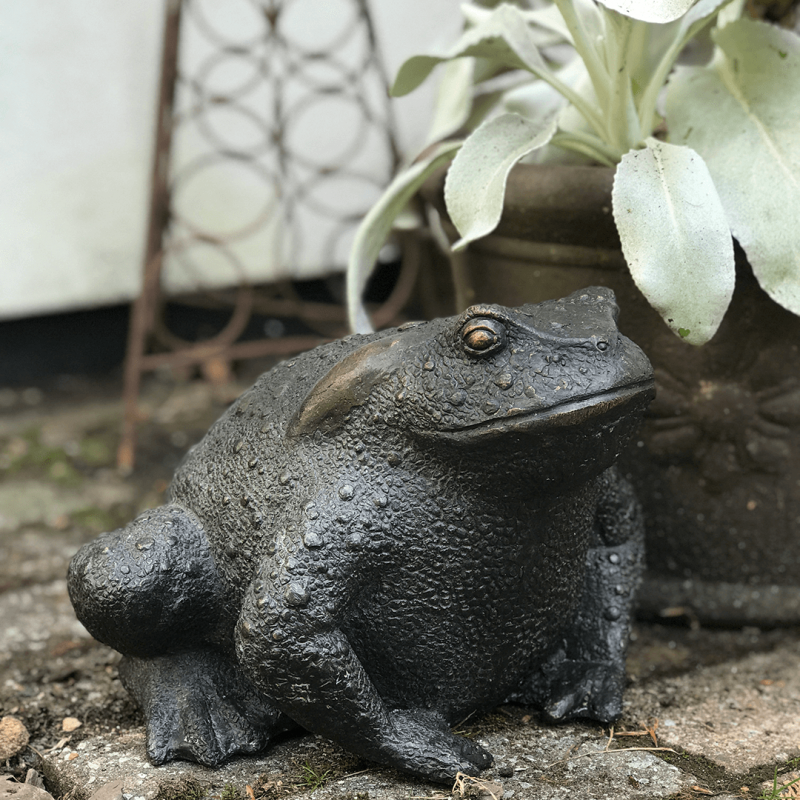 Bronze Toad Product Image