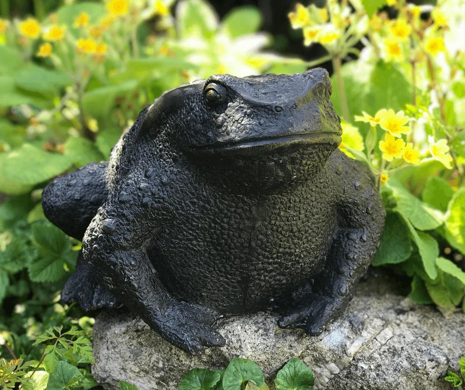 Bronze Toad Garden Statue