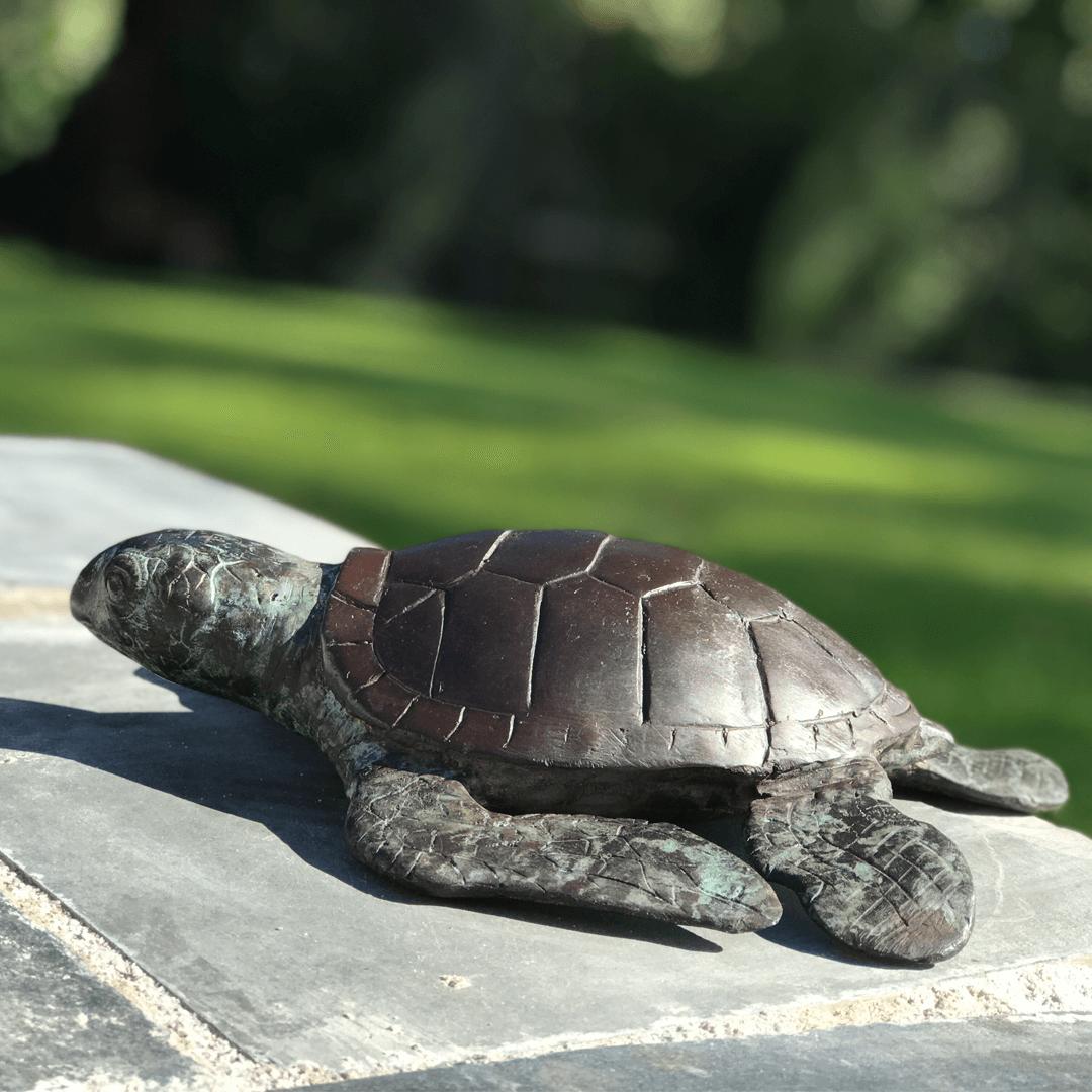 Bronze Turtle Garden Ornament by Adams Bronze