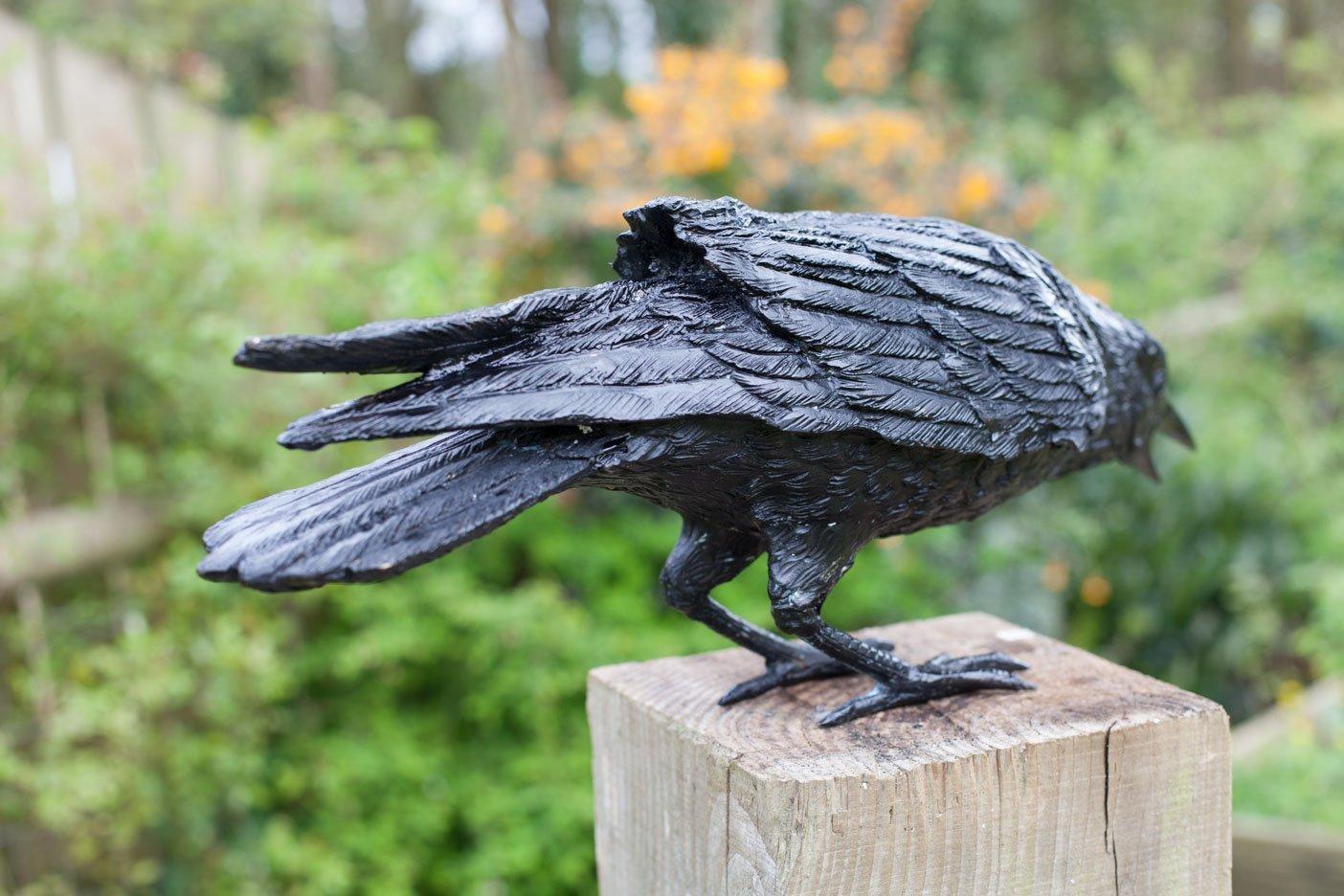 crow6-rav04-4