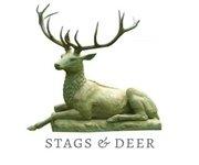 Stag & Deer